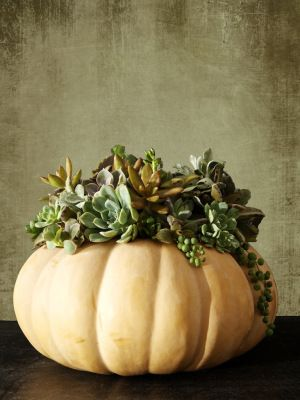 1000 ideas about pumpkin arrangements on pinterest for Glow in the dark paint for real pumpkins