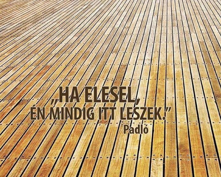 Ha_elesel.jpg (720×576)