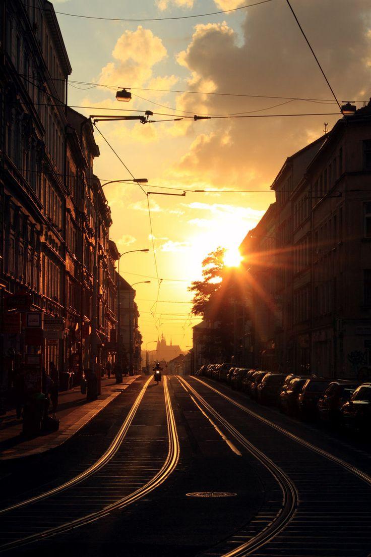 fuckyeahtrams:  Tram rails (Prague, Czech Republic)