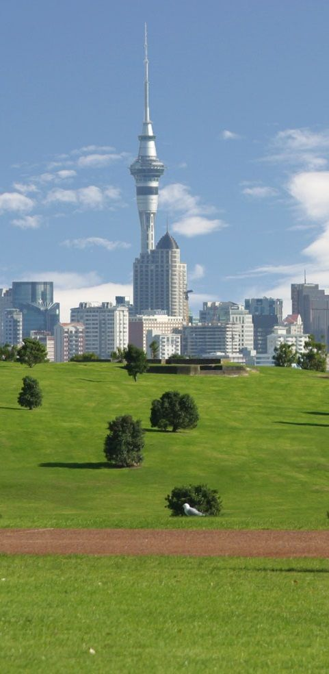Auckland park and Skyline tower - NZ