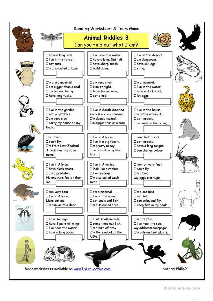 Animal Riddles 3 (Hard) worksheet Free ESL printable