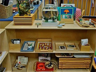 """The """"Brilliant Child"""" blog - loads of Montessori activities from which to take inspiration. I think I would adapt a lot of these activities so that children can work together - at least in groups of two, rather than individually. The Practical Life activities provide some great opportunities for fine motor skill development."""