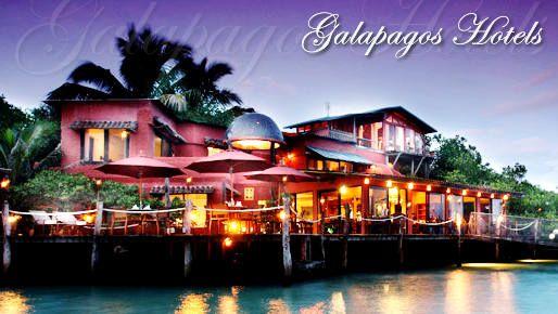 hotel red mangrove puerto ayora - Buscar con Google