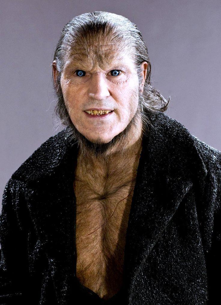 Kennst Du Die Namen Dieser 51 Harry Potter Charaktere Harry Potter Werwolf Remus Lupin