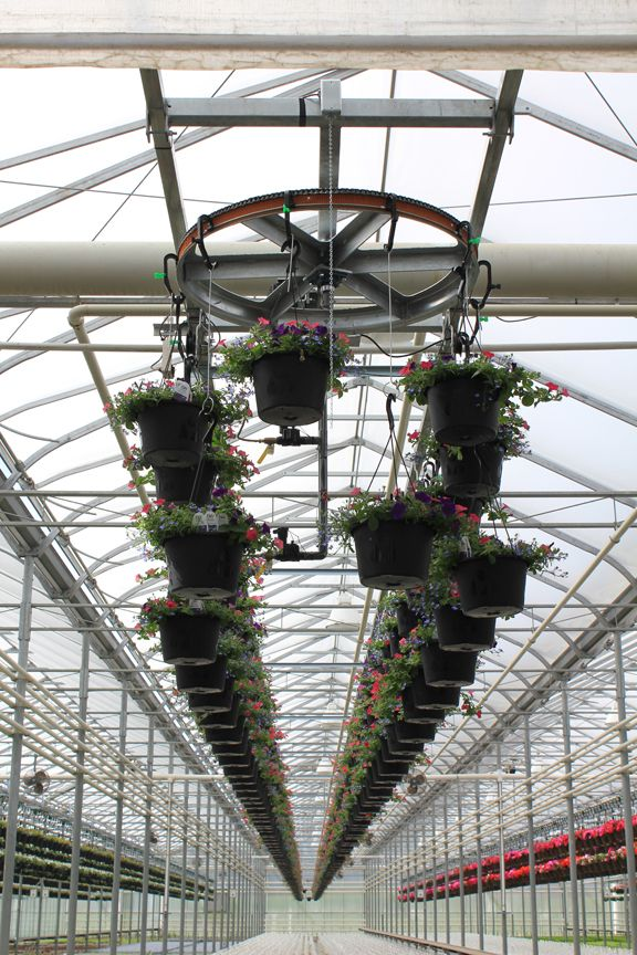 The echo boom irrigation system from cherry creek has helped growers across the united states save space in greenhouses and water plants more efficiently