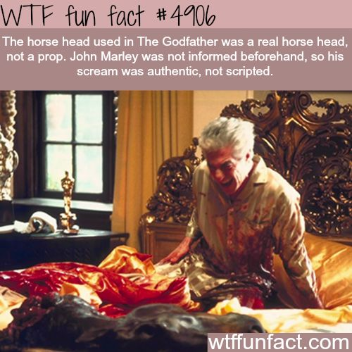 The horse head scene in the Godfather - WTF fun facts