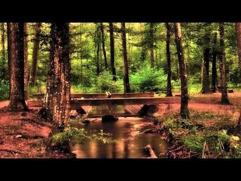 Abraham Hicks ☆ Consciousness After Death