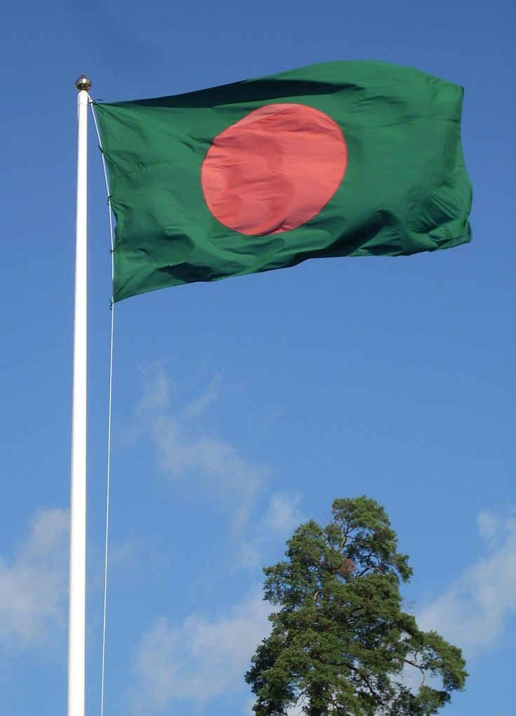 File:Flag of Bangladesh and tree.jpg - Wikimedia Commons
