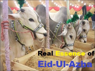 CELEBRATING-EID UL ADHA - Khaleejad Blog