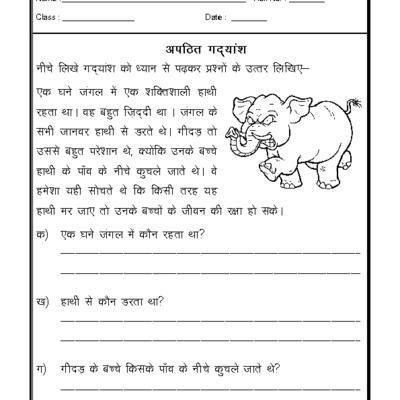 Hindi Worksheet - Unseen Passage-05