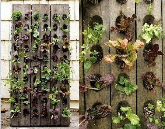 ideas para construir jardines verticales