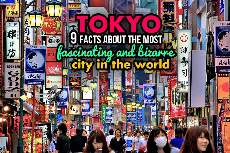 Tokyo - 9 facts about the most fascinating and bizarre city in the world. Photo taken in Kabukicho, Japan 2013 © Sabrina Iovino   JustOneWayTicket.com