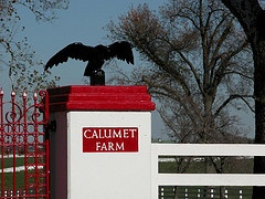 calumet farm in the heart of lexington