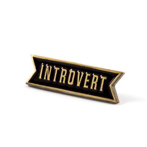Introvert Pin   These are Things