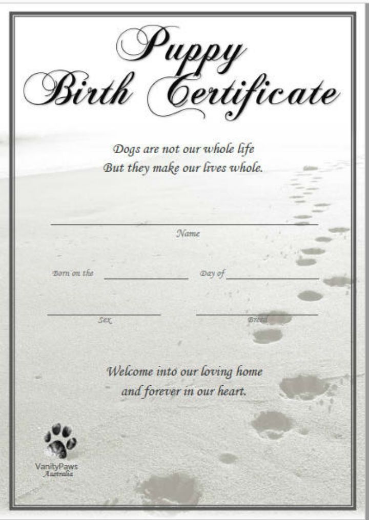 Pdf Psd Ai Indesign Free Premium Templates Birth Certificate Template Dog Birth Birth Certificate