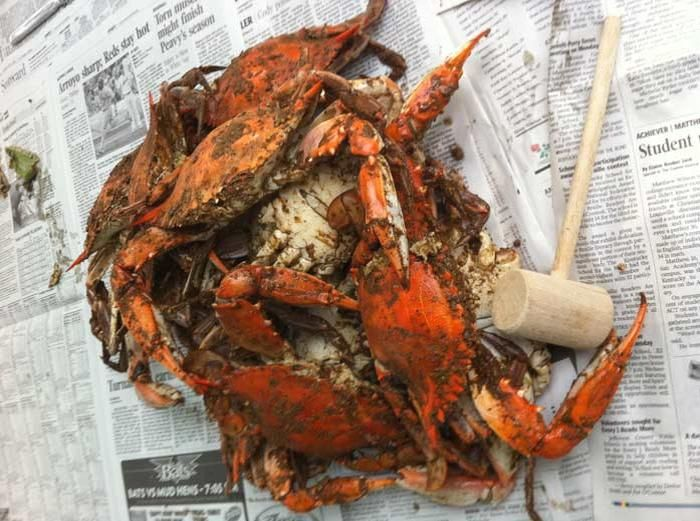 Just found a Vietnamese market near me who always has fresh blue crab in....can't wait to try em out! Steamed Blue Crabs Recipe