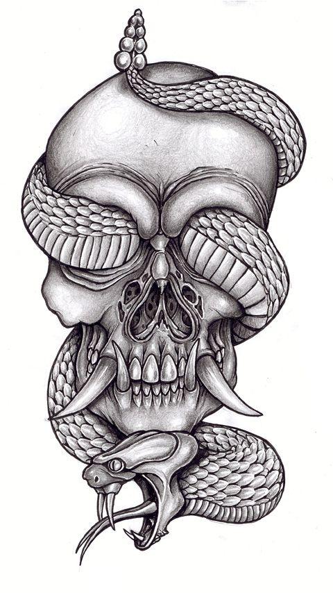 картинки змей карандашом в черепе вам