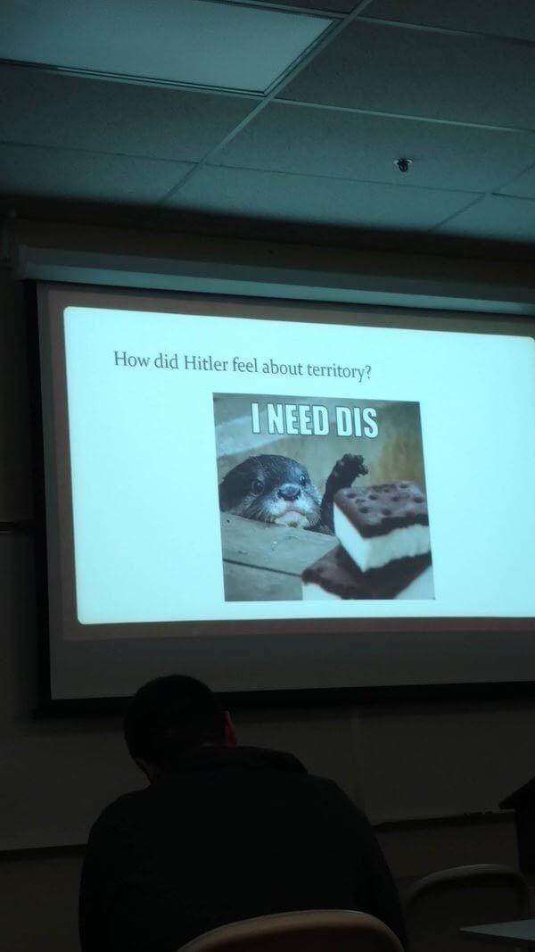 American education in a nutshell