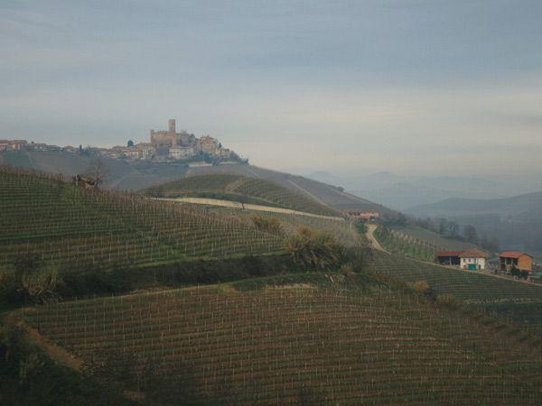 Бароло. Великие красные вина Пьемонта