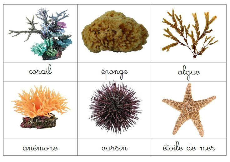 Notre fichier cartes de nomenclature de la mer en PDF disponible ici  Merci à Juanas pour sa collaboration
