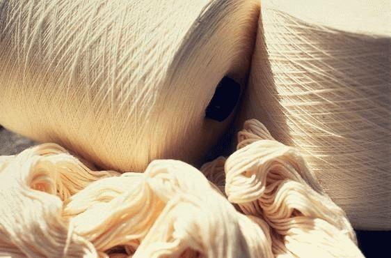 Algodón orgánico, un compromiso social y medio ambiental