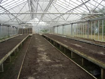 The Breeding Process Seedling house before sowing