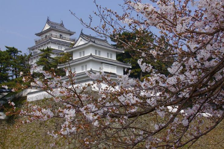Shimabara Castle Shimabara Peninsula (Unzen City, Shimabara City, Obama Town & Minami-Shimabara City) Flowers / Castle ruins, temples and shrines