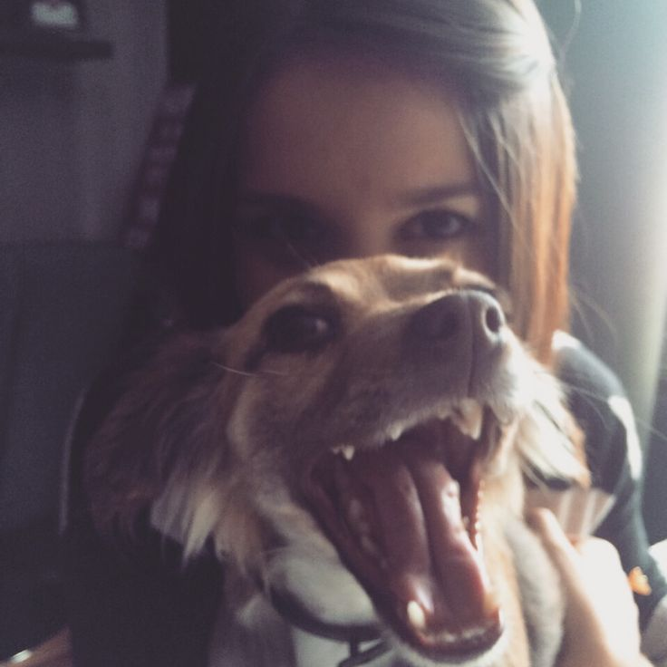 Luna smile!!! Dog life