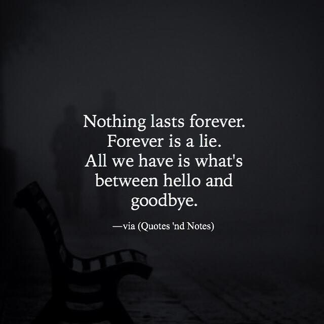 Nothing lasts forever. Forever is a lie. All we have is what's between hello and goodbye. via (http://ift.tt/1QUgG6i)