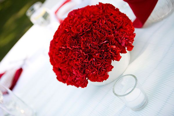 Red Carnations - Picnic Wedding Centerpieces