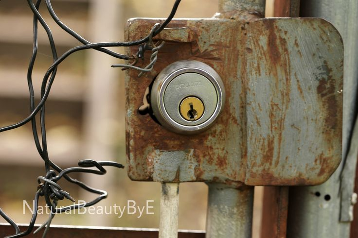 lock on gate, chain link fence lock, schlage yellow lock, lock on metal gate, metal chain link, unique view, outdoor photography, urban