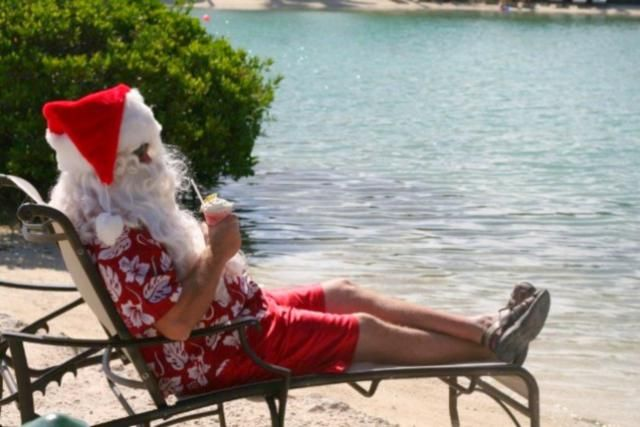 Looking for a Christmas getaway in the Florida Keys? Here's what you need to know about Christmas at Hawks Cay Resort.