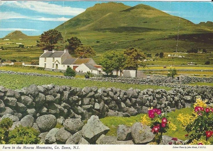 "Vintage collectible 4"" x 6"" POSTCARD Farm Mourne Mountains County Down Ireland"
