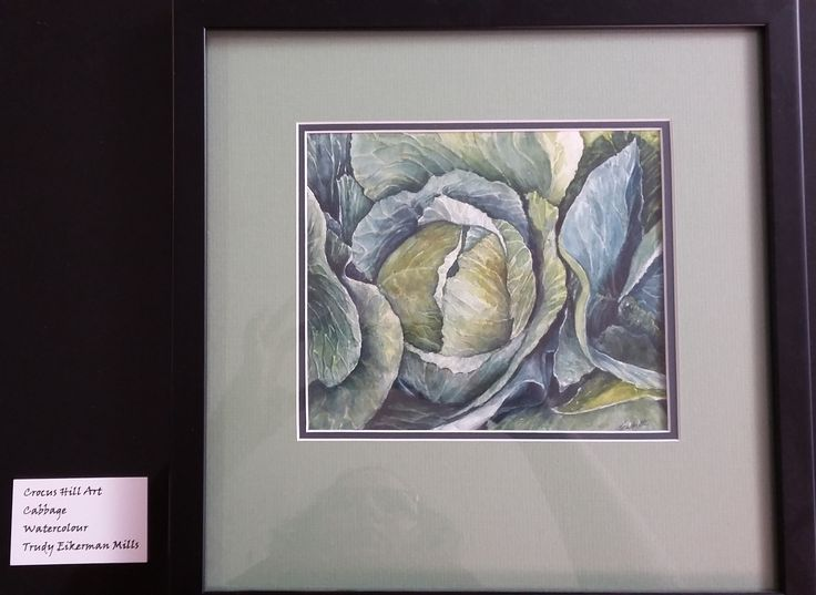 """Art for the month for March 2017, by Trudy Mills. """"Cabbage"""" done in watercolor."""