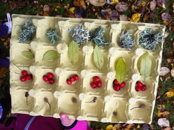 Outdoor math - pattern Utematte - lägg mönster i äggkartonger med naturmaterial