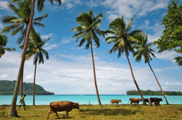 Port Orly, Espiritu Santo, Vanuatu. Photo Credit: Esther & Ron van der Stappen