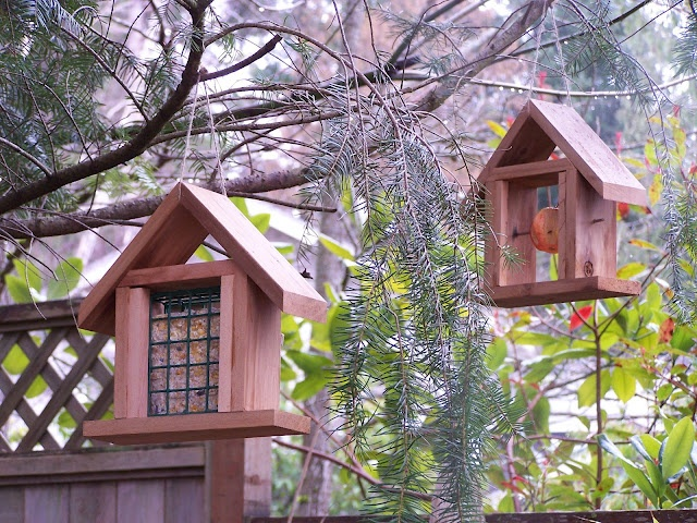 Cedar bird feeders