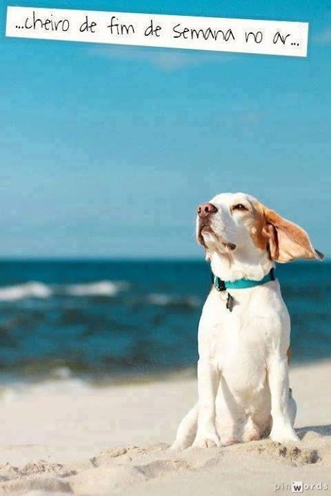 É assim na praia...todo dia é fim de semana!!!