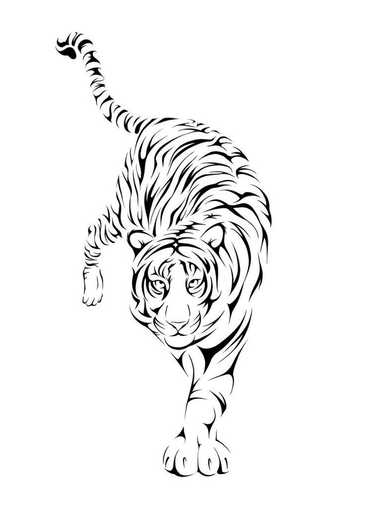 Simple Tiger Tattoos: 38 Best Tiger Tattoo Outlines Images On Pinterest