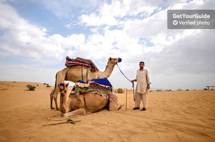 Montez à dos de chameau, traversez les dunes en Land Cruiser, faites du quad dans le désert et du ski de sable, la dernière mode aux Émirats arabes unis. Profitez d'une aventure sportive d'une demi-journée dans le désert depuis Dubaï.