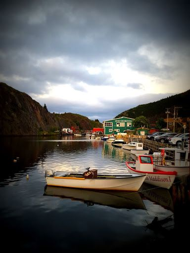 Travel Writers' Secrets: Top Newfoundland Travel Tips