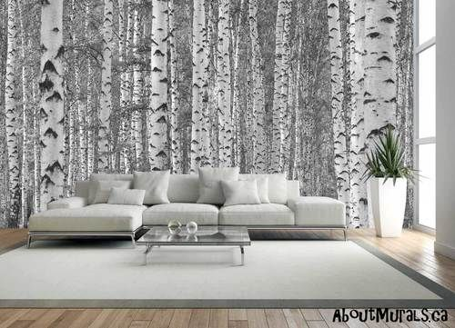 Birch Tree Forest Black White Wall Mural