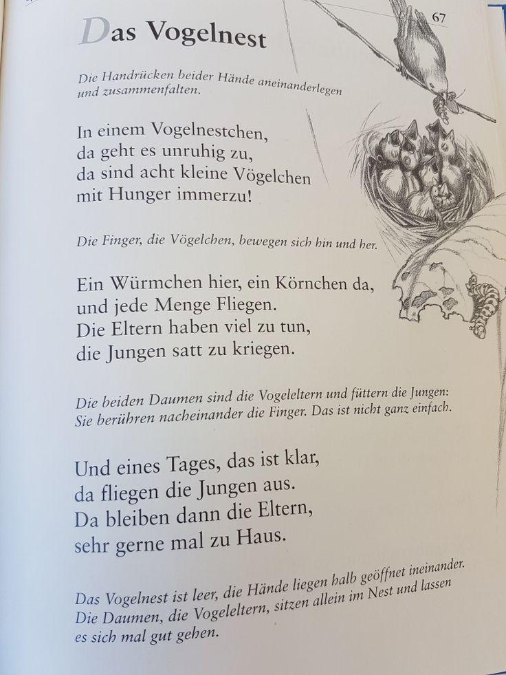 Das Vogelnest #fingerspiel #krippe #kita #kindergarten  #kind #reim #gedicht #erzieherin #erzieher #tiere