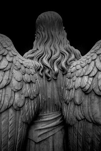 wings of stone.                                                                                                                                                                                 More