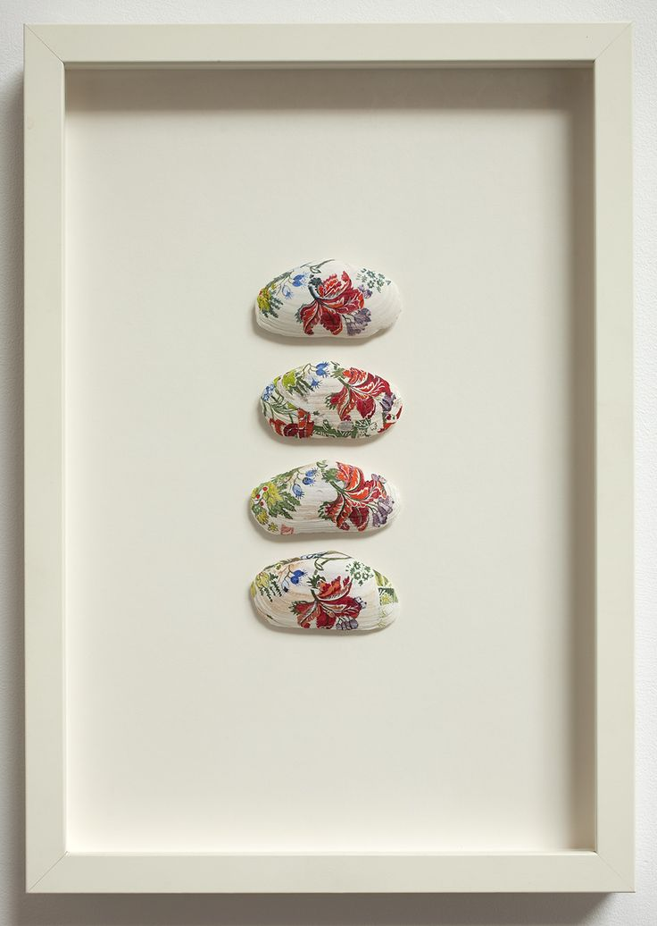 Sarah Hillary, 'Spitalfields Silky from the Victoria and Albert Museum', 2004. Gouache and watercolour on pipi shells, 437 x 309 mm