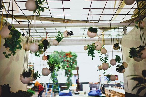 Love the hanging plants