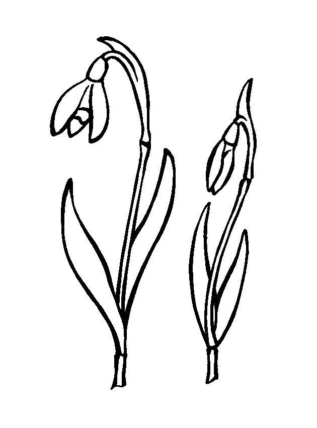 Раскраски весна для детей | Раскраски, Весенние цветы, Для ...