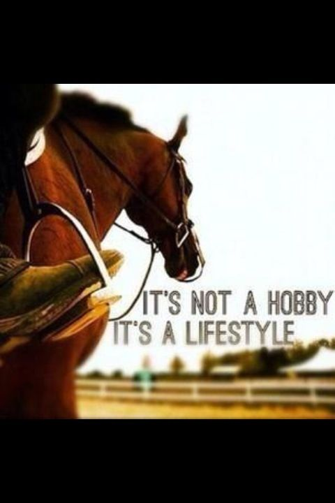 It's not a hobby, it's a lifestyle.