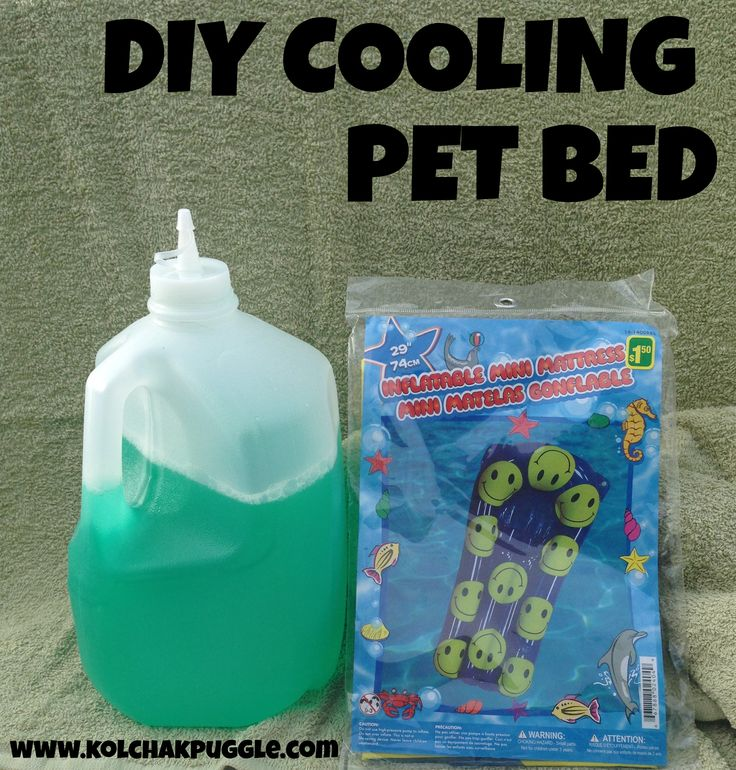DIY Cooling Pet Bed - this is such a great idea now that summer is here!