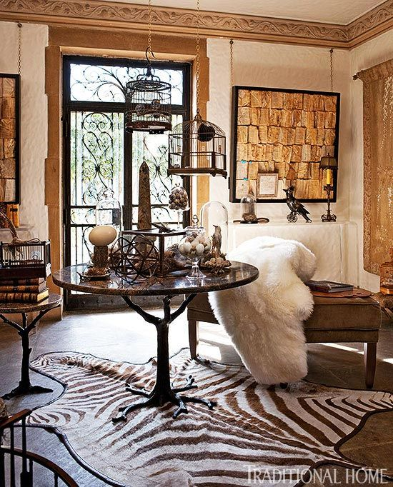 Zebra Rug Interior Design: 47 Best Images About Zebra Rugs On Pinterest